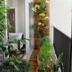 зимний сад из балкона