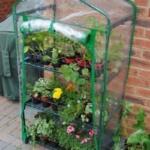 Парник (теплица) для выращивания рассады на балконе на 4 полки (фото)