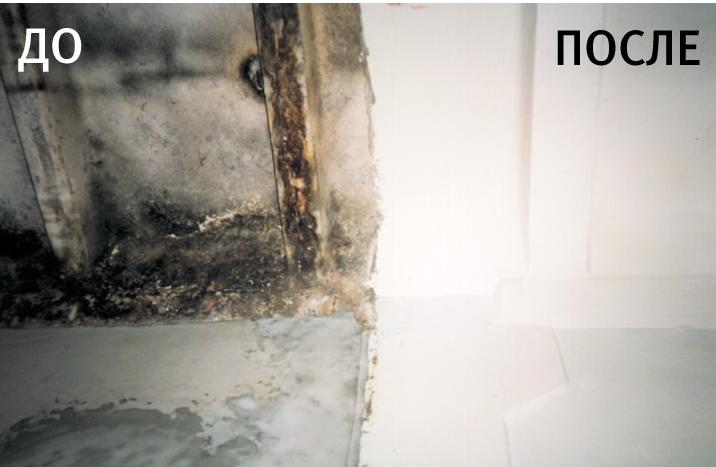 Удаление плесени и грибка в ванной