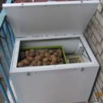 термошкаф для овощей на балконе
