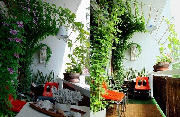 украшение балкона виноградом